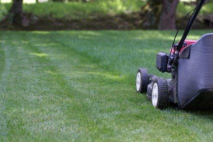Gartenpflege München: Rasenmähen